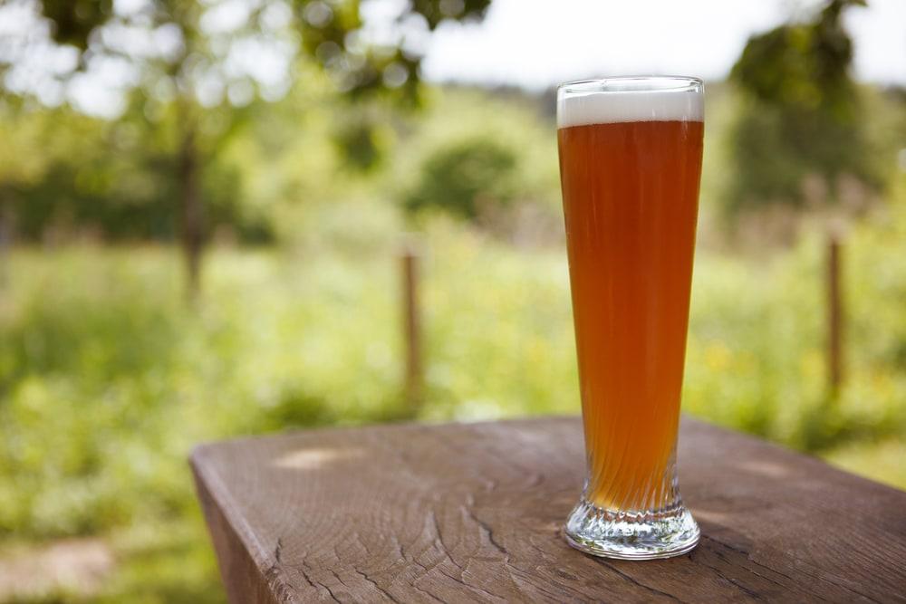 Craft Beer Tours In Denver
